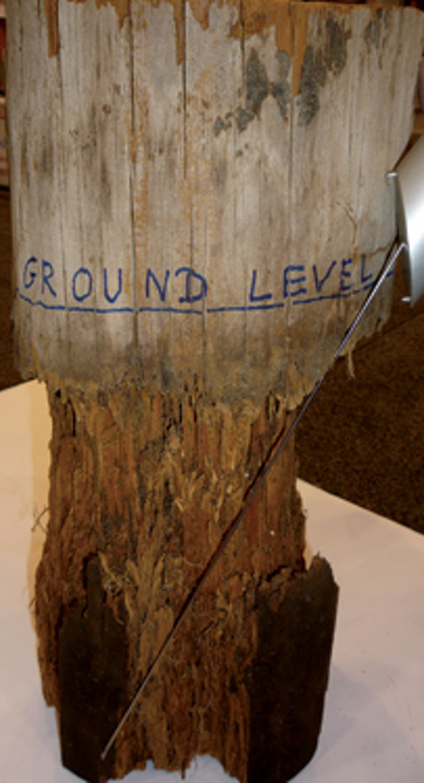 Iml Rot Below Ground W Bit