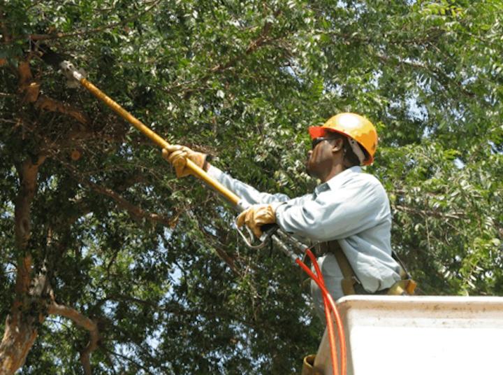 Content Dam Elp Online Articles 2014 07 Tree Trimming Vegetation Management