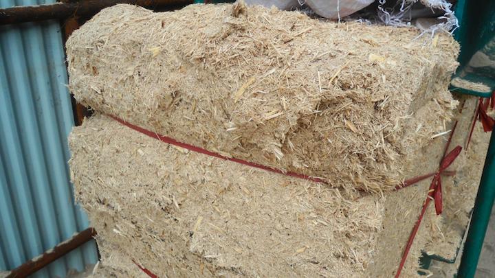 Content Dam Elp Online Articles 2014 08 Biomass Energy Bagasse