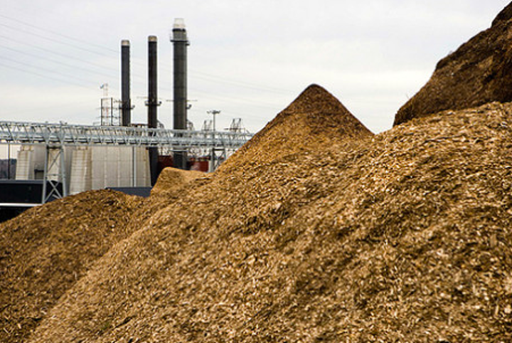 Content Dam Elp Online Articles 2014 10 Wood Biomass Elp