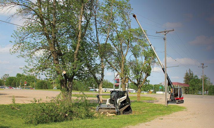 A compact mechanical tree trimmer and skid steer mulcher make an excellent combination for trimming and mulching branches.